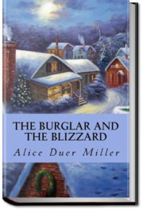 The Burglar and the Blizzard by Alice Duer Miller